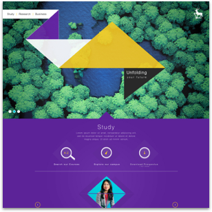 A Creative Redesign of the University of Surrey website